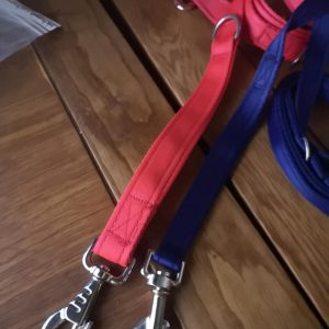 Police style double ended training leads